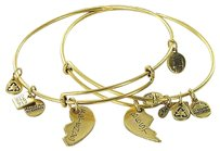 Alex and Ani Alex And Ani Cdb12bfrg Best Friends American Heart Assoc Bracelet Russian Gold