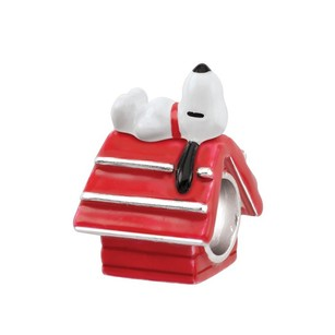 Other Snoopy House Sterling Silver