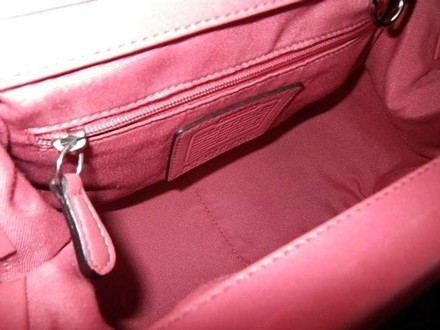 Coach Louis Vuitton Dooney Bourked Channel Tote in pink