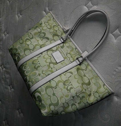 Coach Louis Vuitton Dooney Bourke Chanel Vintage Green Travel Bag
