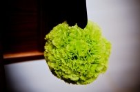 14 Green Pomander Balls W/ Navy Ribbon