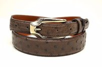 Tardini Khaki Brown Ostrich Belt Silver Hardware 200111at