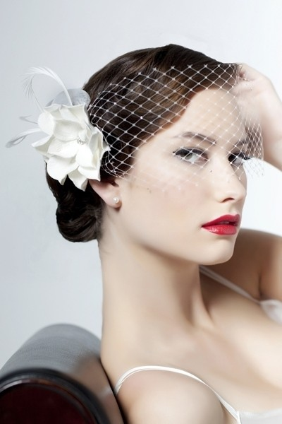 Ivory Birdcage Bridal Veil 47% off retail