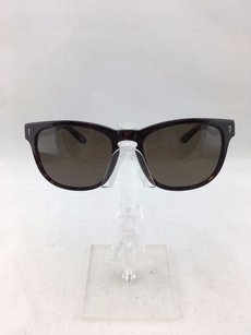 Spy Spy Optics Polarized Beachwood Wayfarer Sunglasses
