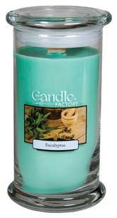 The Candle Factory The Candle Factory Large 15-ounce Jar Crackling Candle, Eucalyptus