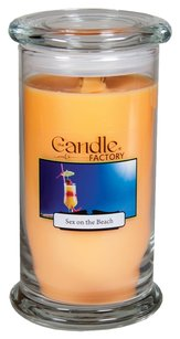The Candle Factory The Candle Factory Large 15-ounce Jar Crackling Candle, Sex on the Beach